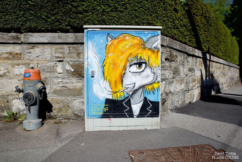Lausanne électrique (14)